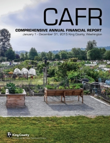 2015CAFR_cover