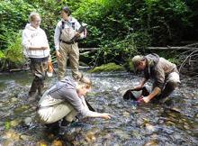bear-creek-sampling