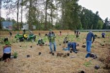 Pictured: Volunteers planting trees.