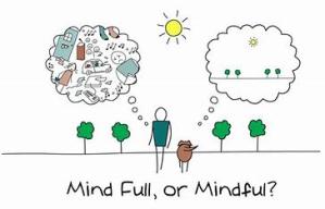 mindfulness_dajd