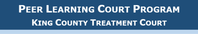 peer learning court program
