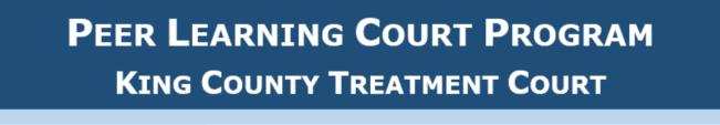 peer learning court program