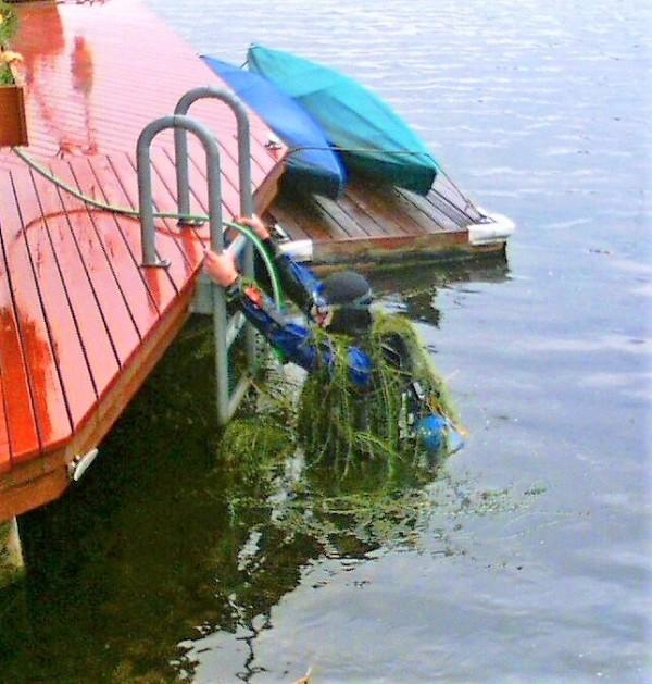 brazilian-elodea-diver-lake-union